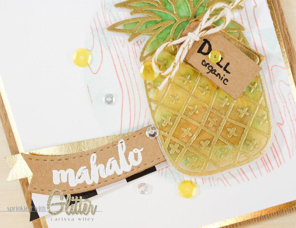 Mahalo Watermarks 8 of 13_zpsmij807p1.jpg