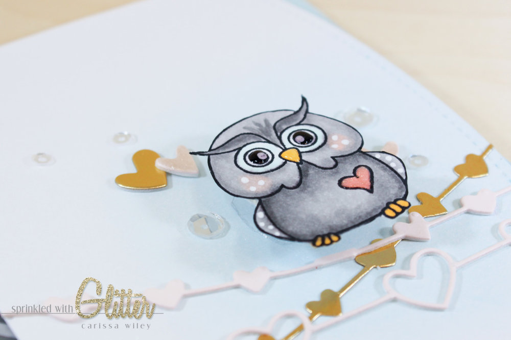 Owl On A Wire Finals Watermark-9_zps9lx6edx5.jpg
