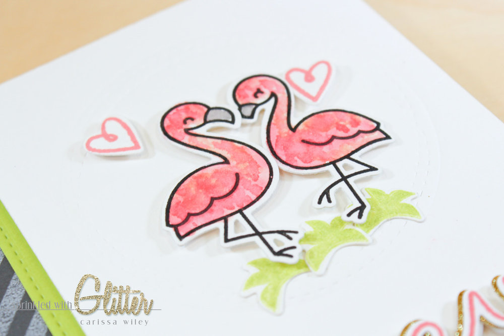Flamingo Finals Watermark-11_zpsvszly7rp.jpg
