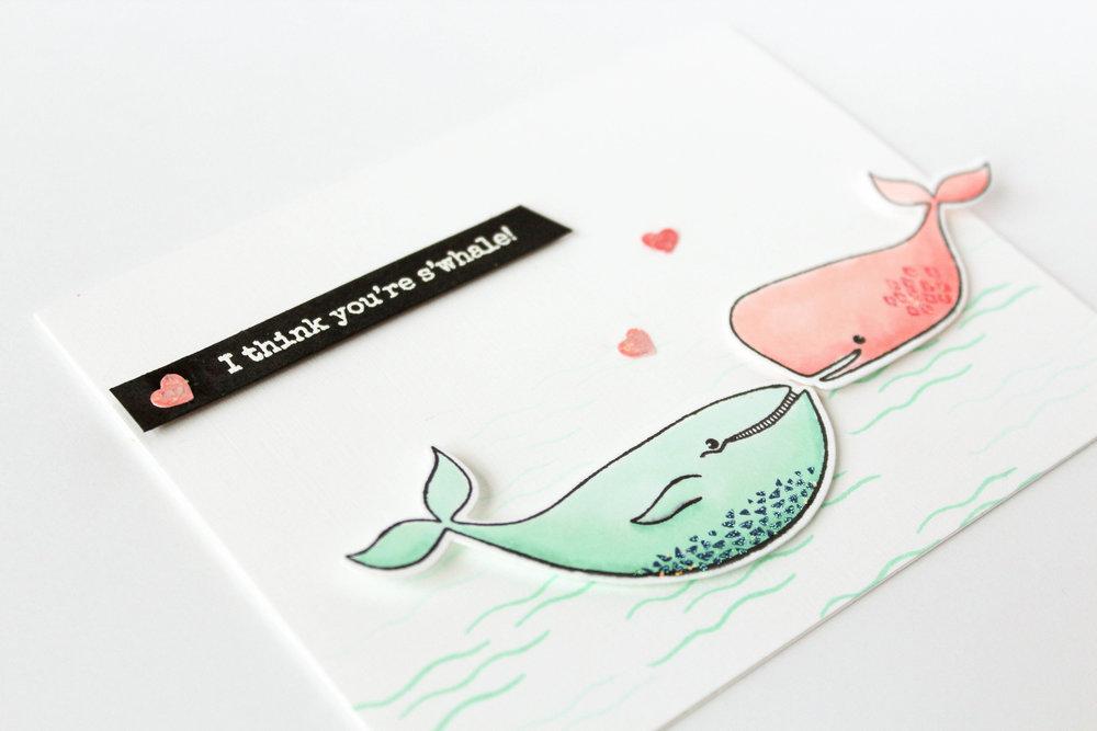 s'whale-8.jpg