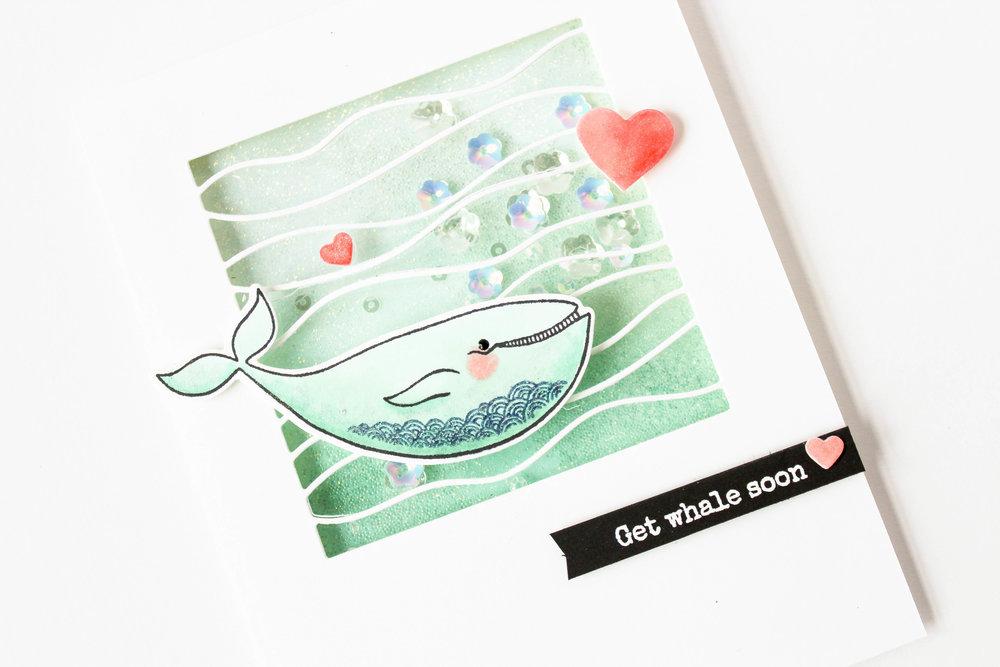 s'whale-30.jpg