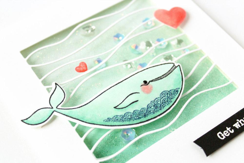 s'whale-38.jpg