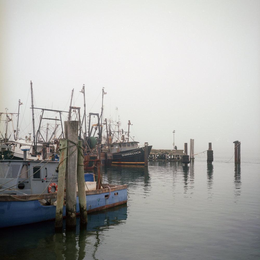 dock-WEB.jpg