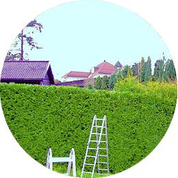 Beskjæring/hage - Trenger du vedlikehold av dine busker og trær? Vi står for beskjæringen!Vi har mer enn 20 års erfaring og mange faste kunder i vårt nærområde. Beskjæring foretaes fortrinnsvis i vinterhalvåret, og vi begynner sesongen midt i oktober og holder på til sent i april. Hekker klippes på sommerhalvåret.Kontakt oss for et godt tilbud