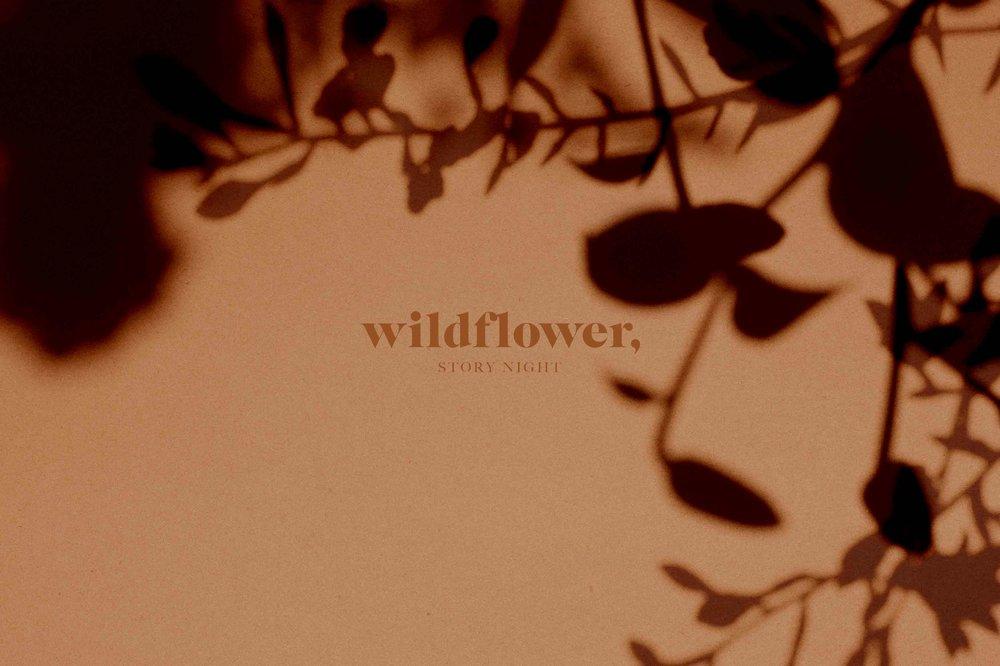 wildflower-story-night-storytime-womensnight.jpg