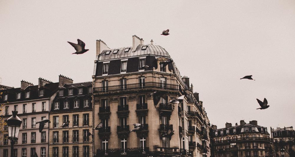 Paris-Dec_10+(28+of+184).jpg