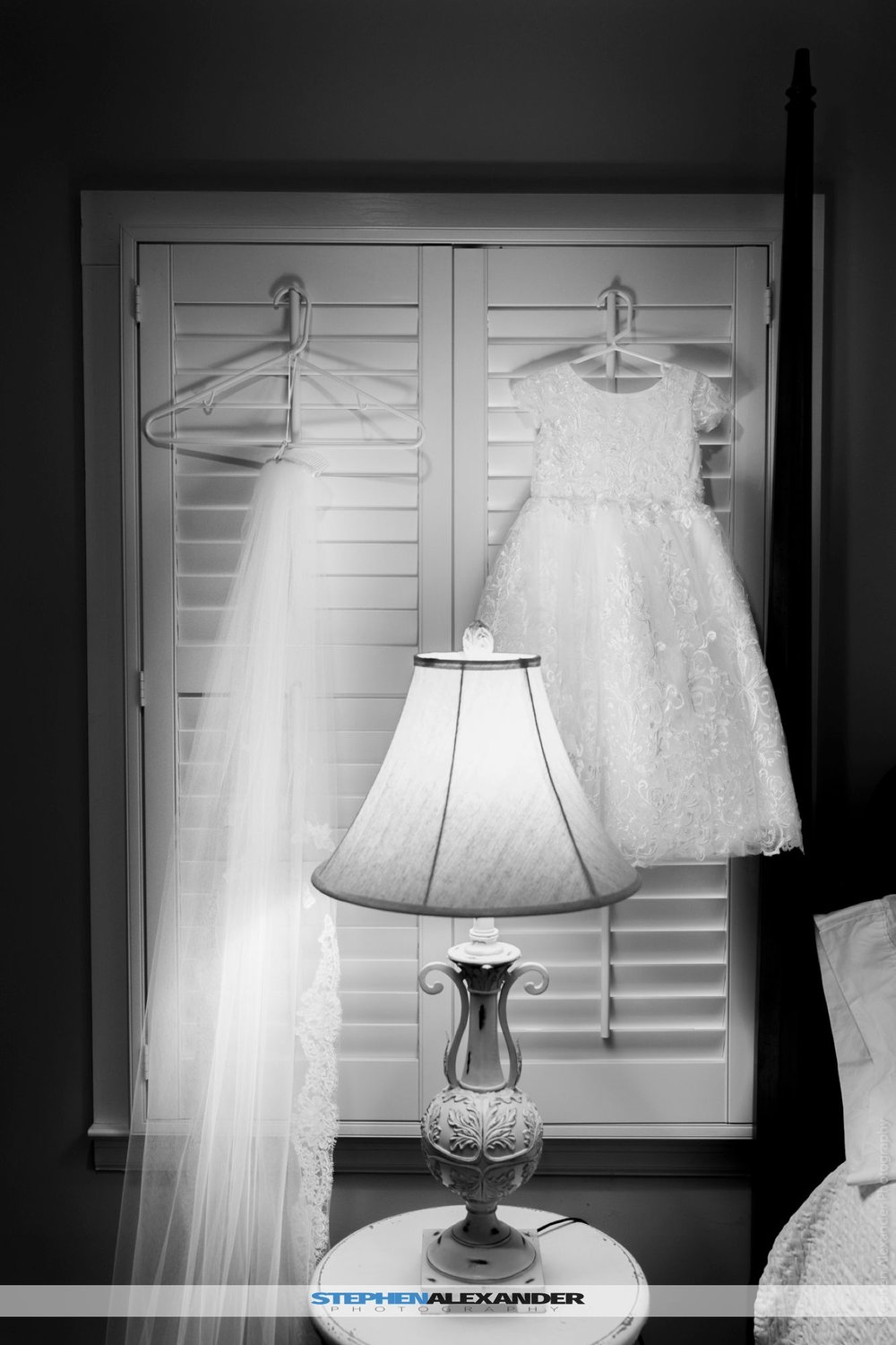Flower girls dress and Long White Vail