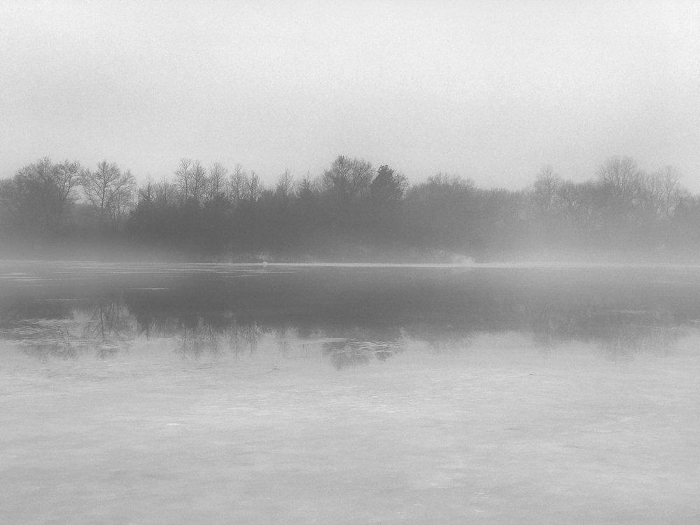 Winter-Fog_v1.jpg