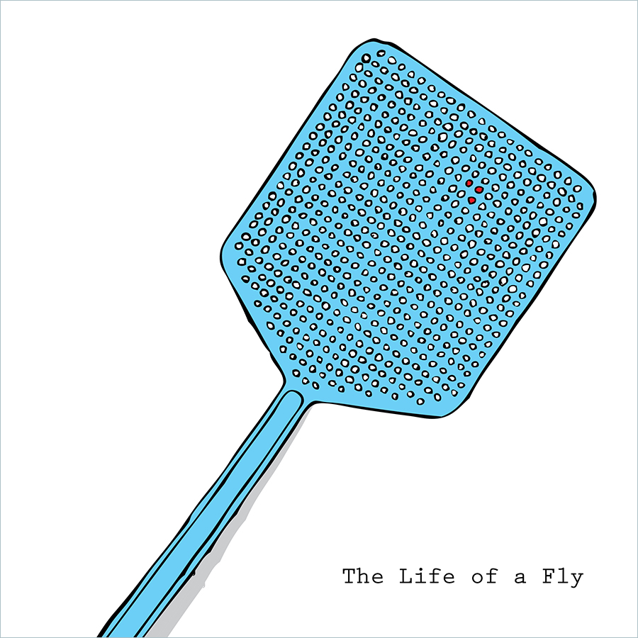 The Life of a Fly Adult Picture Book