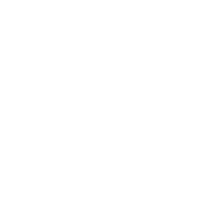 BergMedia Creative Agency