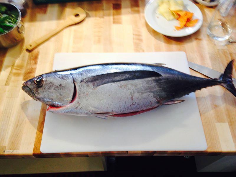 Pacific Northwest Albacare Tuna
