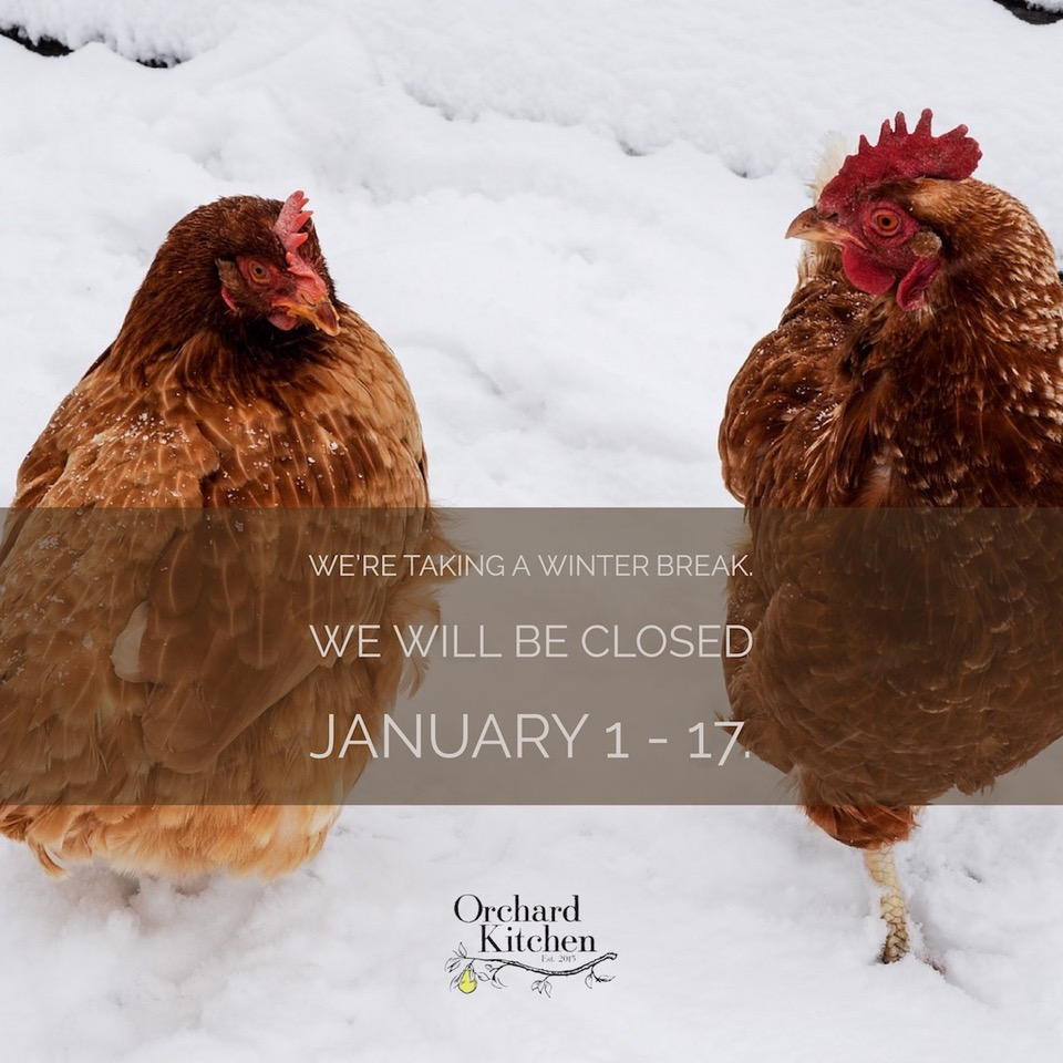 Winter Break Orchard Kitchen chickens snow.jpg