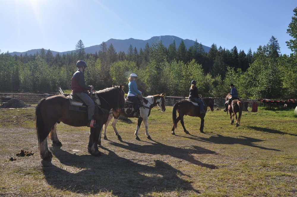 Trail Rides Leave from Discovery Center in West Glacier.jpg