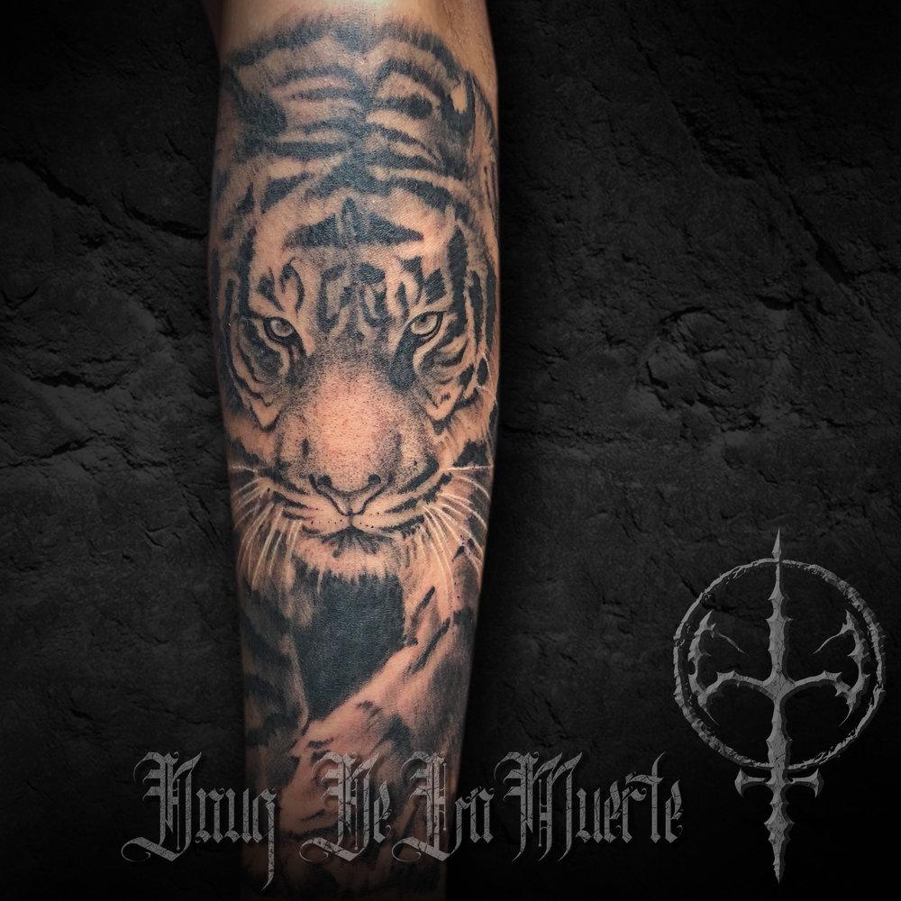 Tattoo_post_tiger.jpg