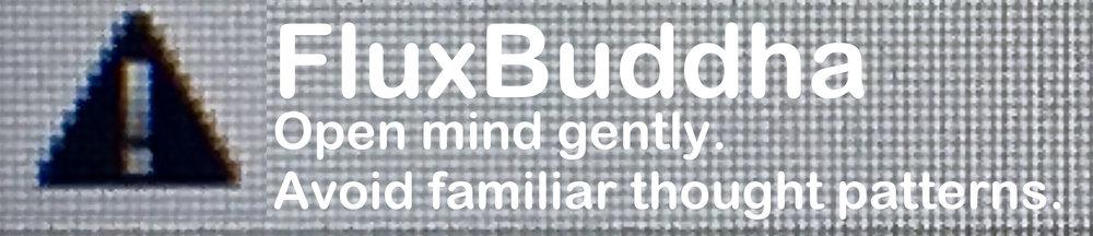 FluxBuddha-pixel.jpeg