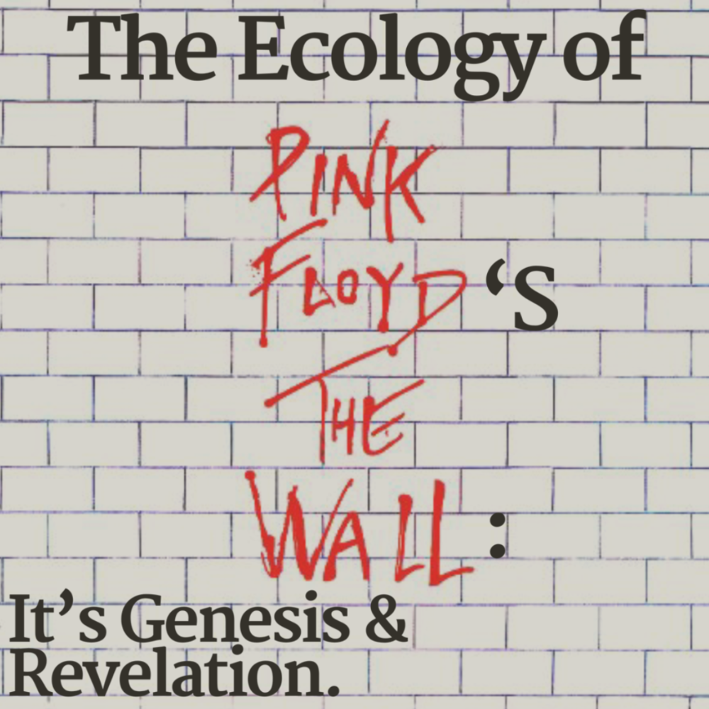 Pink Floyd Book Cover.png