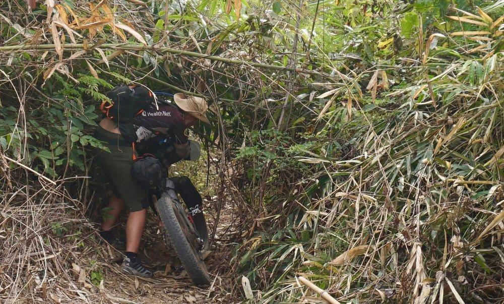 Ho Chi Minh Trail jungles