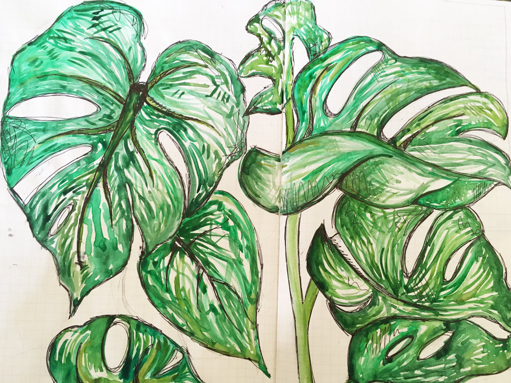 Monstera plant painting 2017