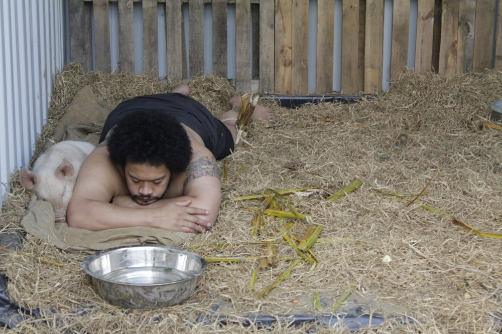 "Kalisolaite ""Uhila,  Pigs in the Yard,  2011  The Performance Arcade, Aotea Square, Auckland (Photo courtesy: Sam Trubridge)"