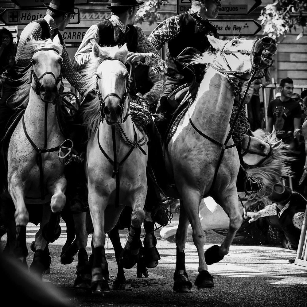 White Horse Down!, Abrivado Bandido, Uzès