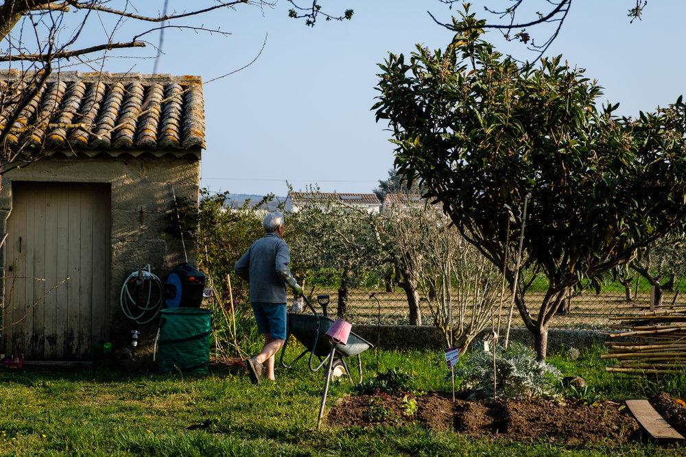Garden Project - 35 - DSCF6038 copy.jpg