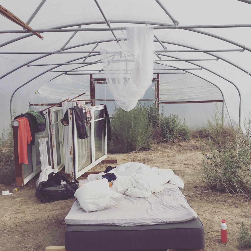 De første dagene i sommer bodde vi i polytunnelen. Det var litt som å være i en ørken. Helt tørr luft, 100 grader varmt om dagen og kaldt om natten. Men også litt hyggelig, og spennende når det kom et skikkelig uvær en natt.
