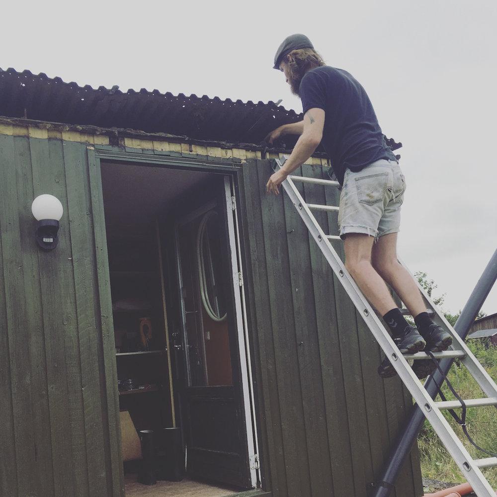 Thea hadde godt advart oss om at taket nok skulle gås etter, så det fikk Frimand tatt seg av med det samme, mens jeg ga ytterveggene et nytt strøk mosegrønn maling, i god jakthytte stil.