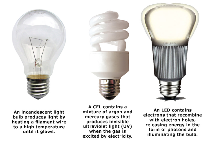 Federal-Light-Ban-Bulb-Types.jpg