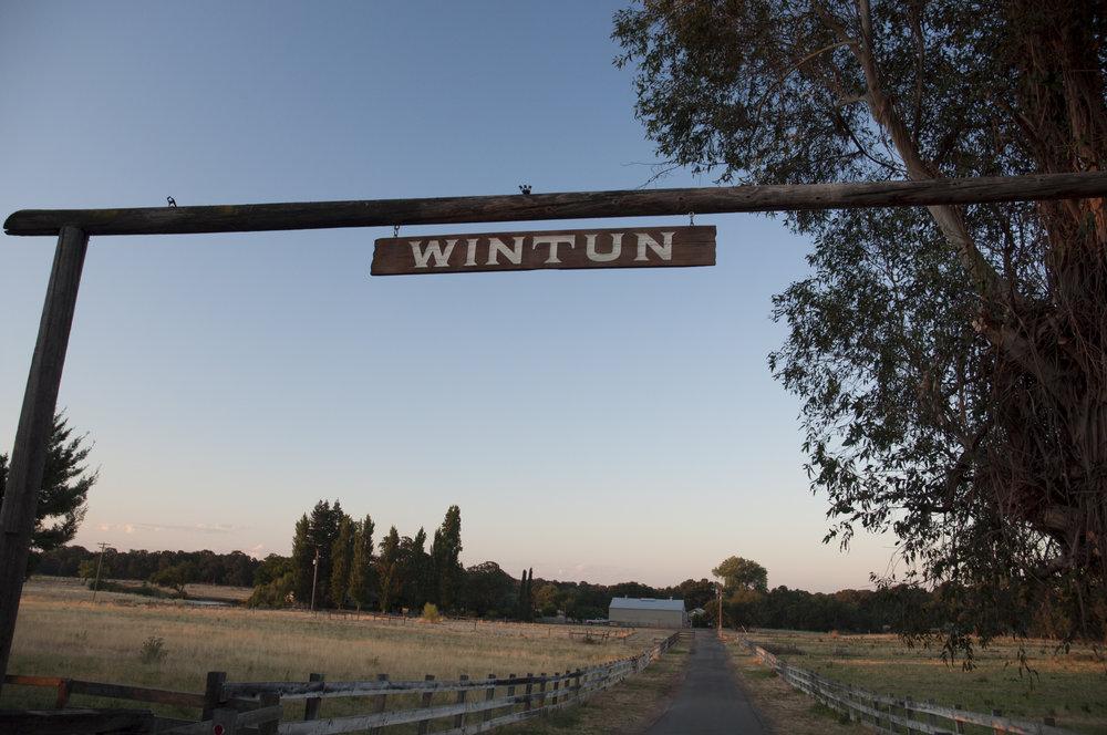 Wintun Ranch Carousel 1.jpg