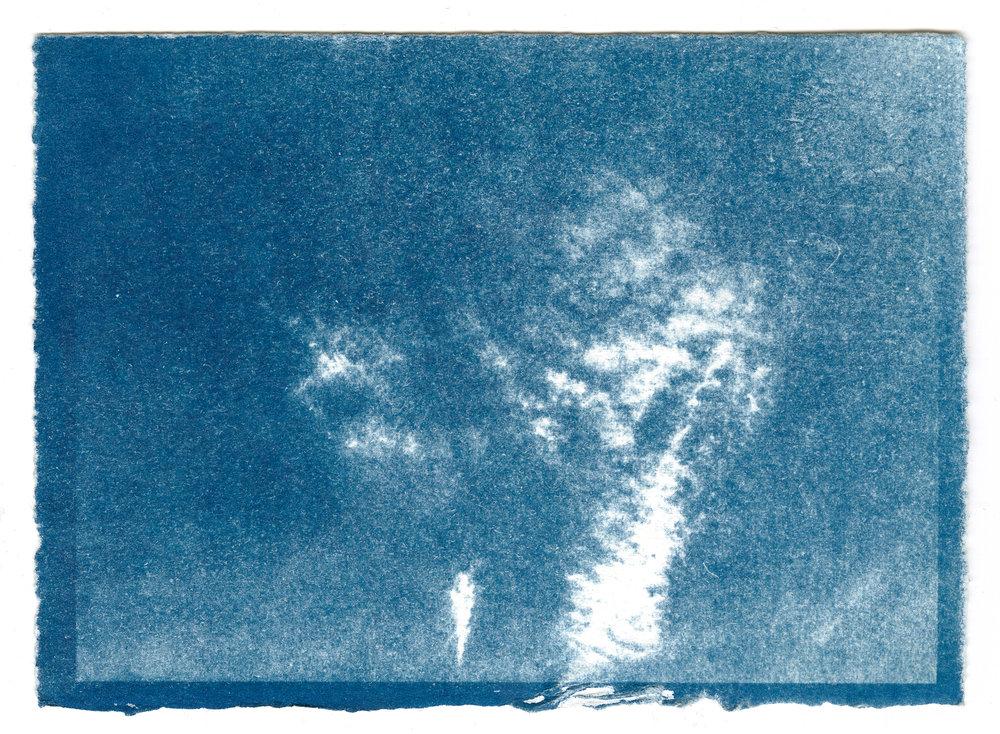 Sky 1 (9).jpg