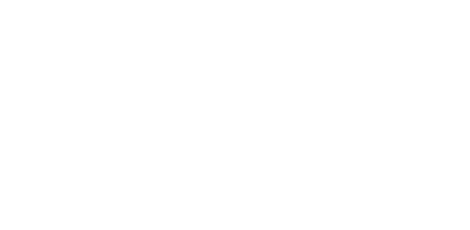 Arkansas & North Carolina Wedding Photographer