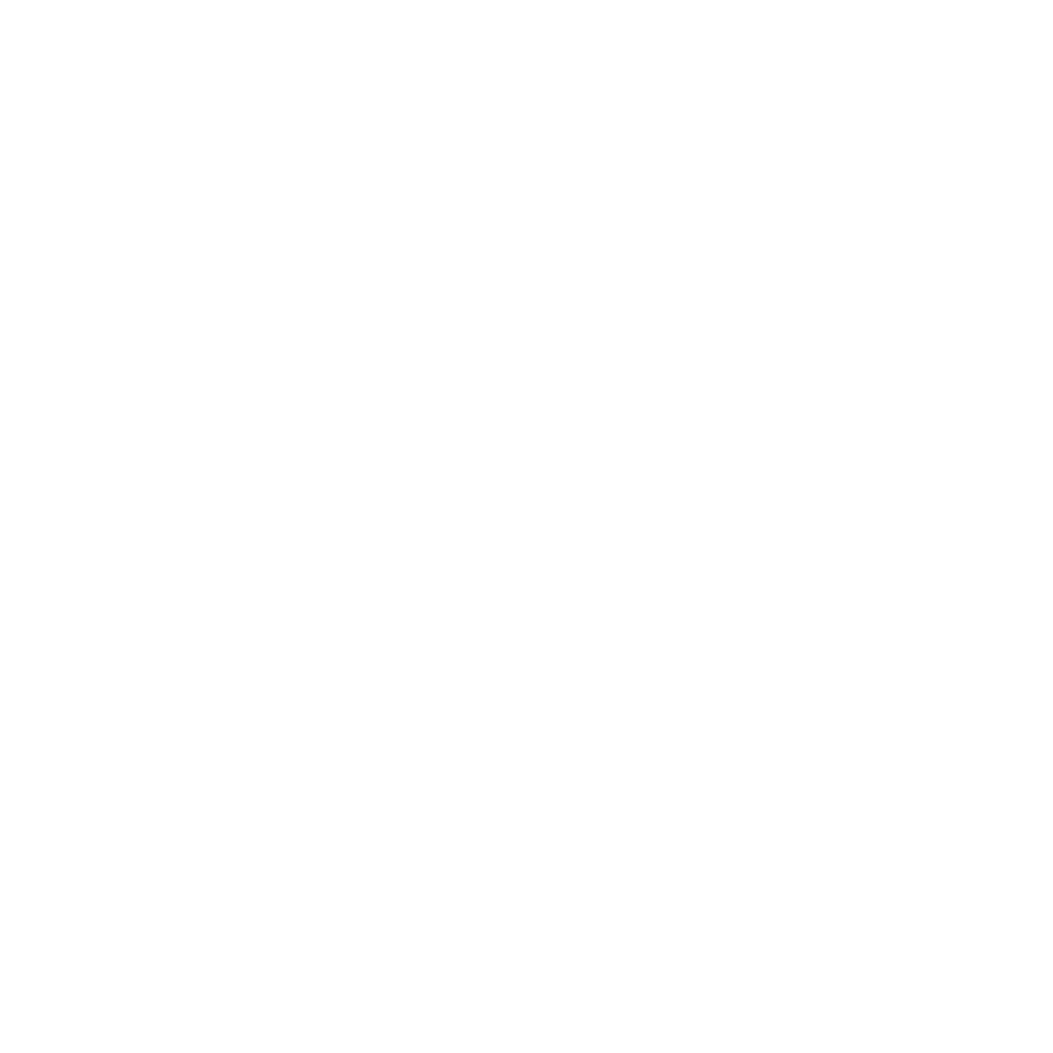Wildthing Flyfishing