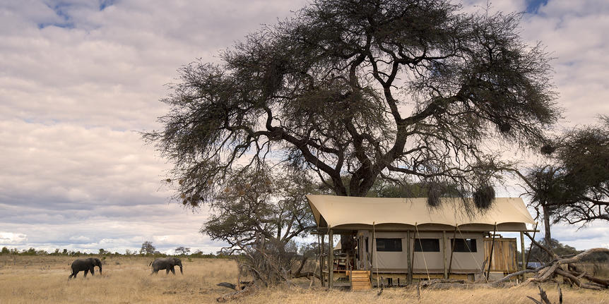 What African Safaris Are About: - In addition to game viewing and wildlife tracking, safaris are about:Experiencing the local cultures of AfricaExploring scenic places and natural wondersVisiting historical highlights and sightseeingParticipating in adventure and outdoor