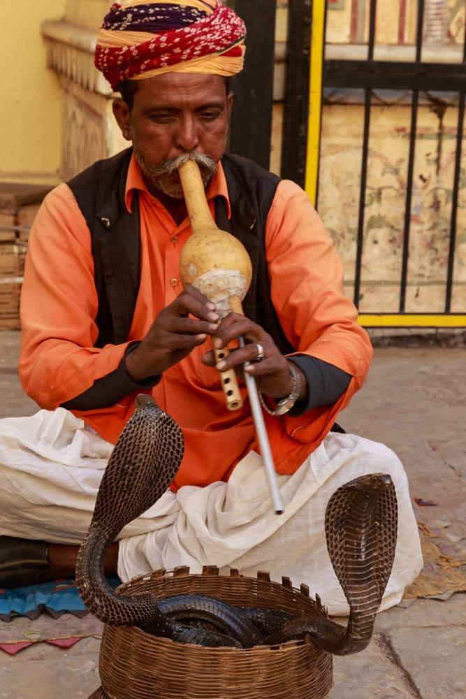 India-jaipur-snake-charmer-copyright-lewis-kemper.jpg