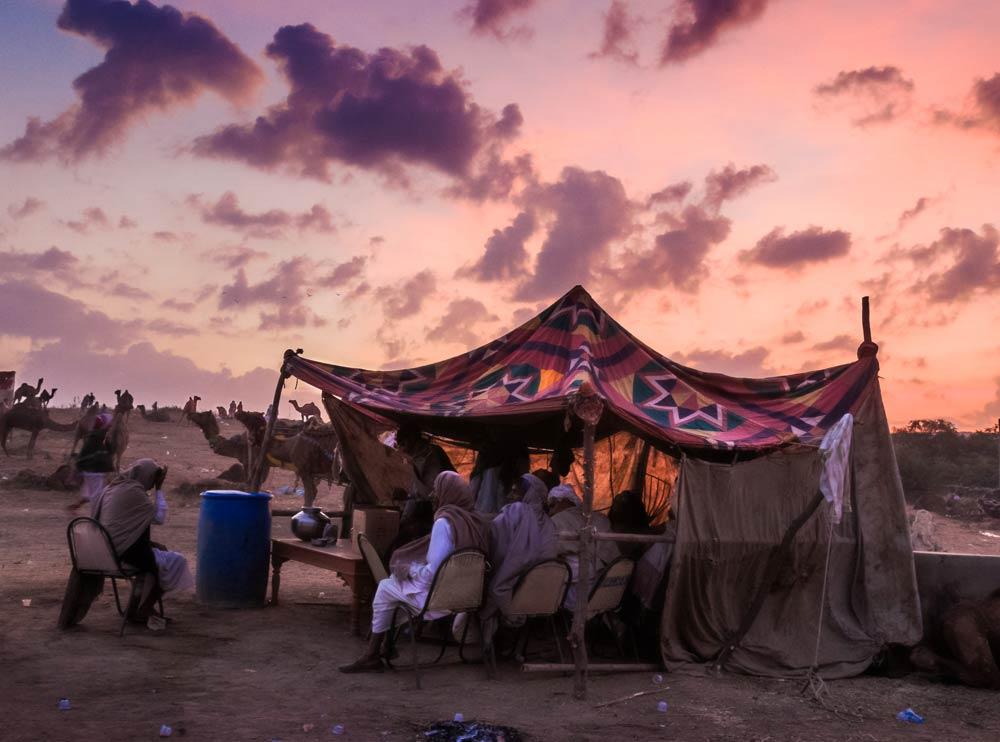 India-rajasthan-sunset-pushkar-camel-fair-copyright-lewis-kemper.jpg