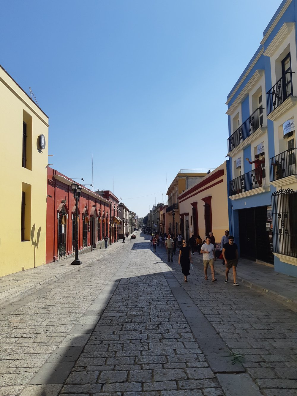 discover the best of oaxaca -