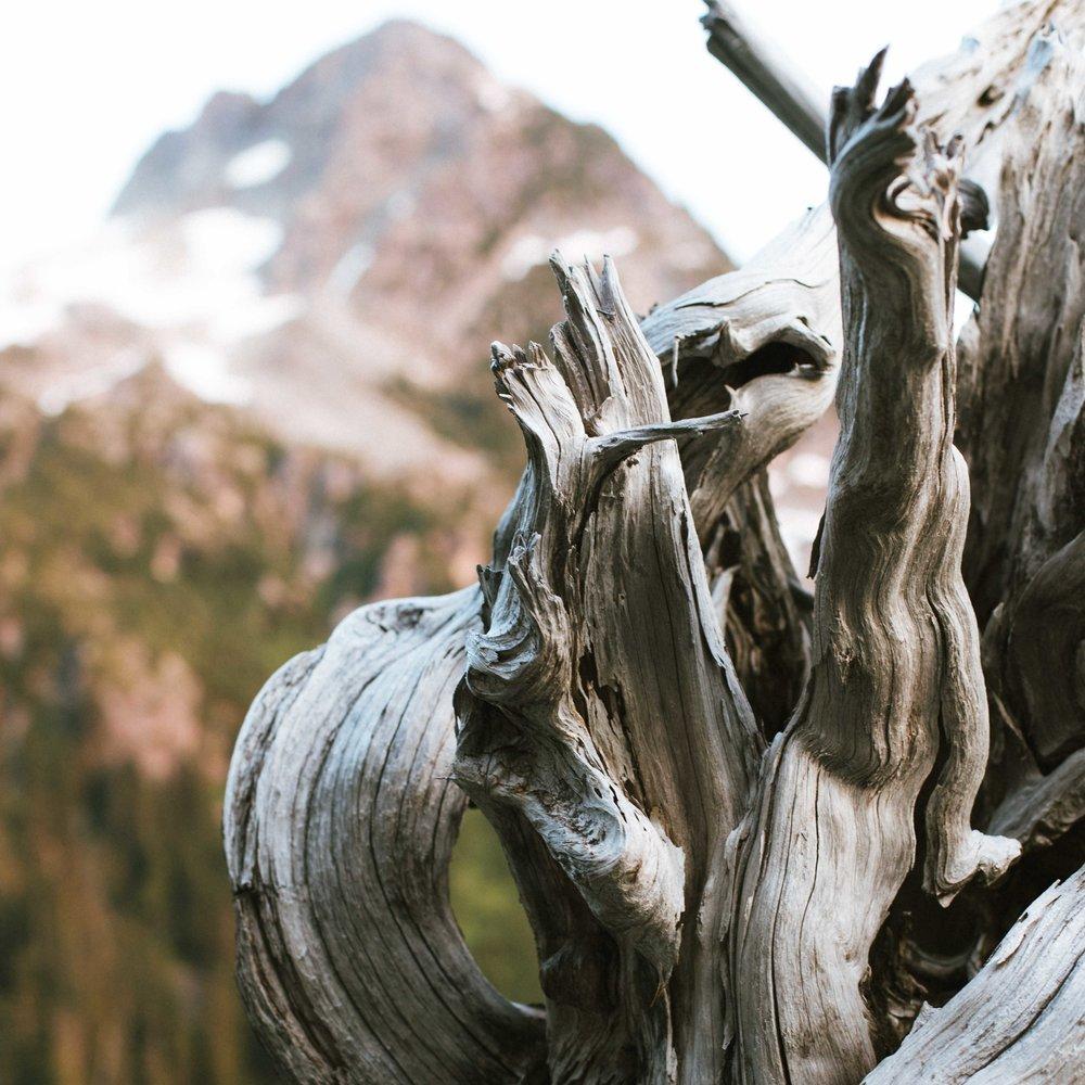 Alex Gorham , Squamish, Water sprite
