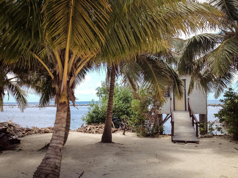 site de rencontres Belize sérieusement datant ou engagé Roger Tirabassi