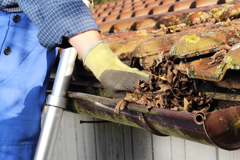 Gutter cleaning services -
