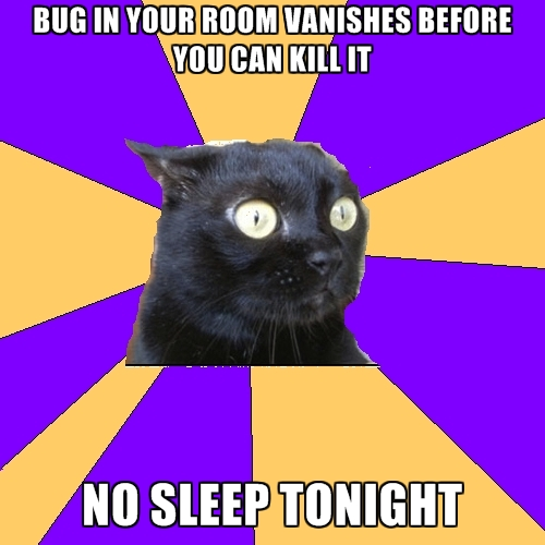 bug-in-your-room-vanishes-before-you-can-kill-it-no-sleep-tonigh.jpg