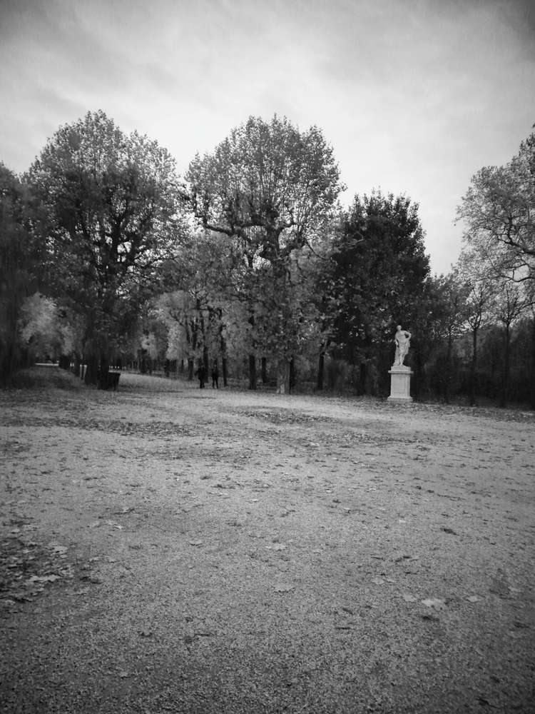 - Series -stillnessDusk and stillness are the mine theme in this series. Deceptively in the uncanny, but simple scene without people, interpreting ageless. Although visual influenced from late works by French photographer, master Eugene Atget.