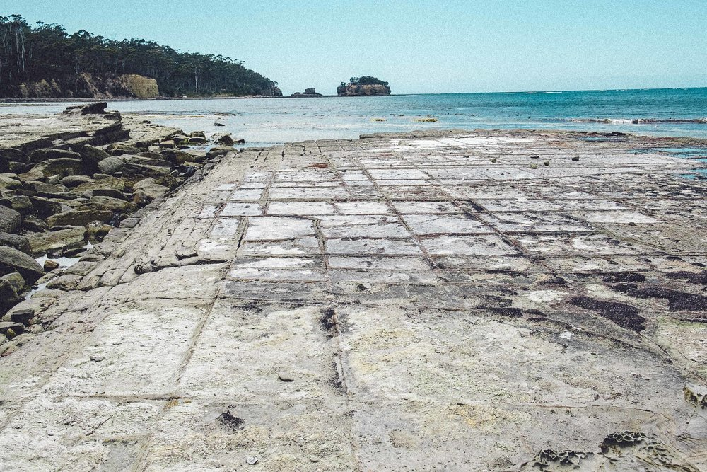 Rachel Off Duty: How to Spend 5 Days in Tasmania - Tessellated Pavement
