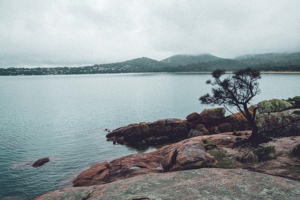 Rachel Off Duty: How to Spend 5 Days in Tasmania - Freycinet Lodge