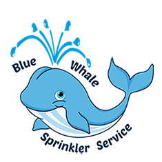 blue-whale-sprinklers-logo-small.png