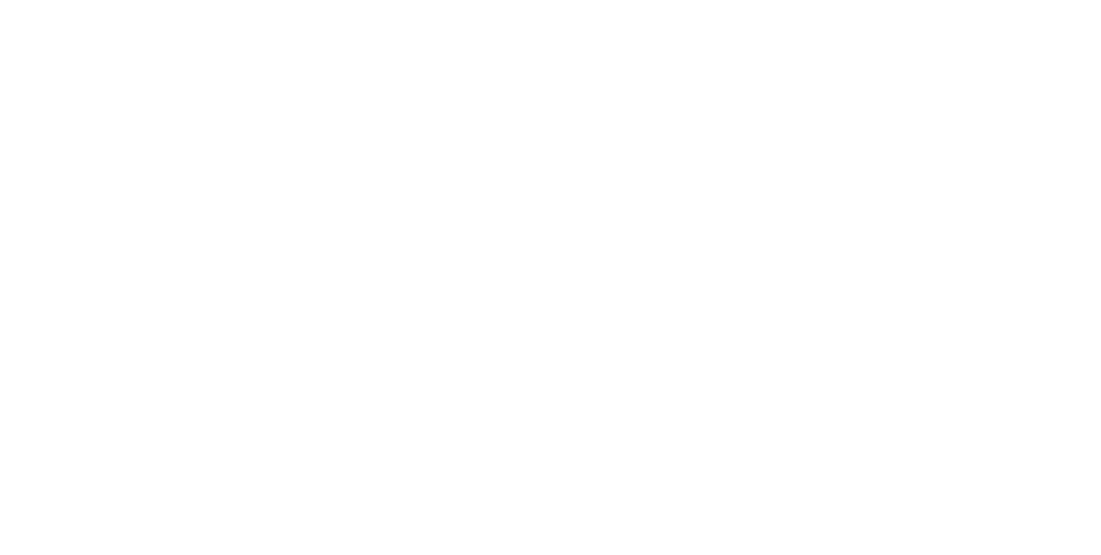 Porsche_MZR_neg_100mm_V1_US.png