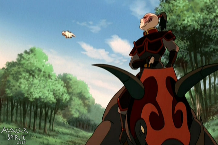 Zuko looks over his shoulder at Appa flying away from him. Aww, Zuko, you do have a heart. Somewhere. Sort of.