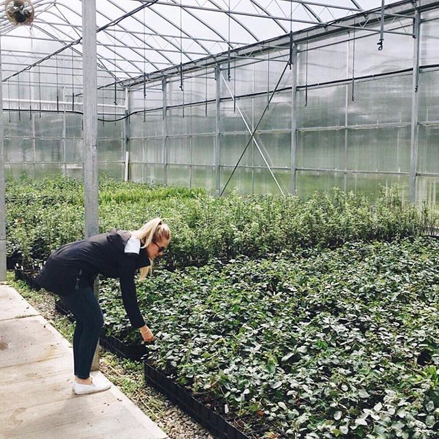 Spring has sprung 🌱 Which means we are that much closer to exploring greenhouses and working on our green thumbs. #springishere