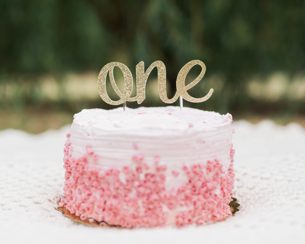 The First Birthday Cake Smash Collection Modern Heirloom Photography