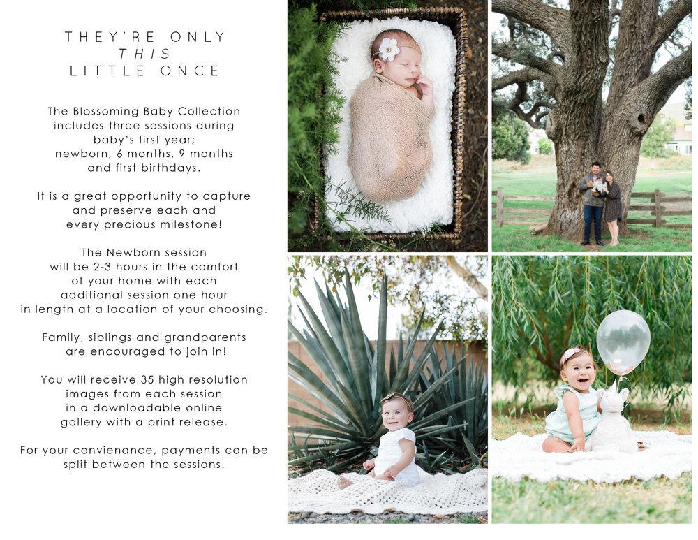 Newborn Guide - Page 13.jpg