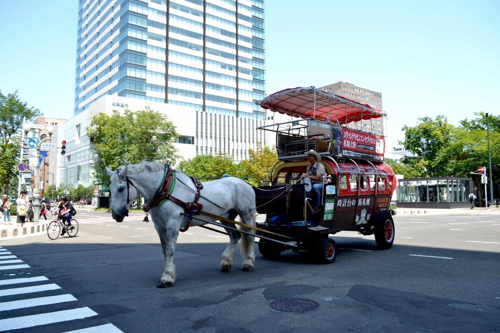 Random horse wagon!